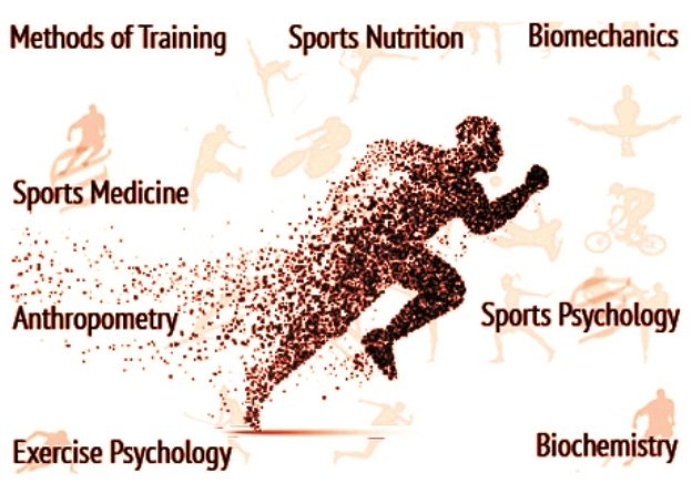 sports science degree entry requirements